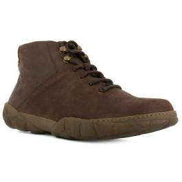 Turtle N5083 Brown