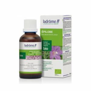 Epilobe - Extrait de plante fraiche bio 50ml