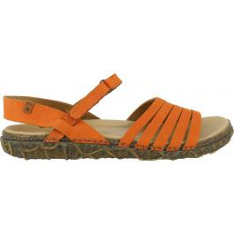 Redes N5501 Carrot