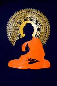 T-shirt homme meditation Bouddha lotus