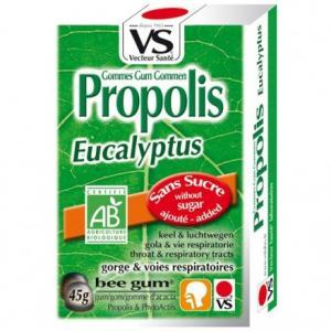 Gomme propolis Eucalyptus bio