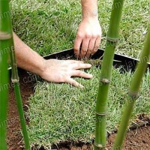 Bamboo Stop Bidim Anti-Rhizome Bambou 10x0.73m