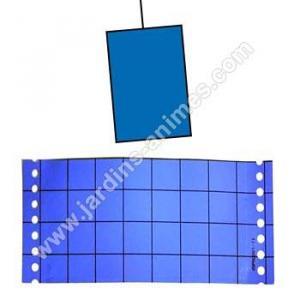 Piège chromatique bleu contre les thrips
