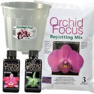 Kit de rempotage Orchidée - pot 17cm