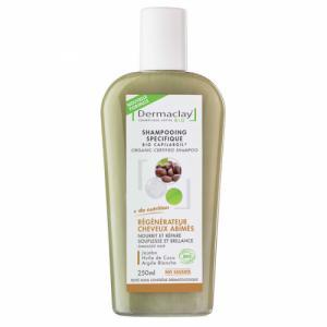 Shampoing Traitant Bio Capilargil Régénérateur Cheveux Abîmés 250ml