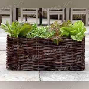 Potager Balcon Salade 62L