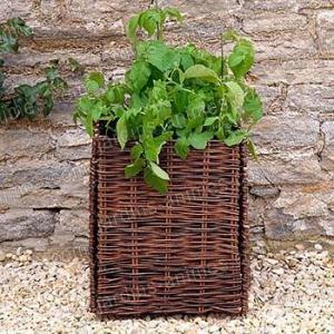 Potager Balcon PdTerre et Tomates 80L